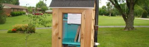 The new Slam Dunk Books Little Free Library 15682.